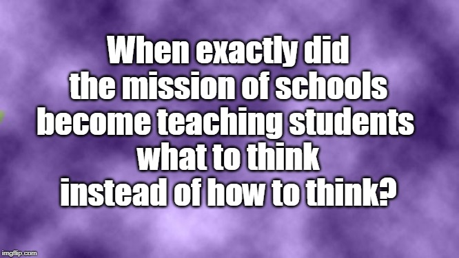 Blank purple  | When exactly did the mission of schools become teaching students what to think instead of how to think? | image tagged in blank purple | made w/ Imgflip meme maker