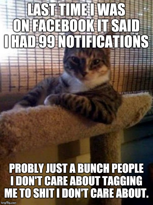The Most Interesting Cat In The World Meme | LAST TIME I WAS ON FACEBOOK IT SAID I HAD 99 NOTIFICATIONS PROBLY JUST A BUNCH PEOPLE I DON'T CARE ABOUT TAGGING ME TO SHIT I DON'T CARE ABO | image tagged in memes,the most interesting cat in the world | made w/ Imgflip meme maker