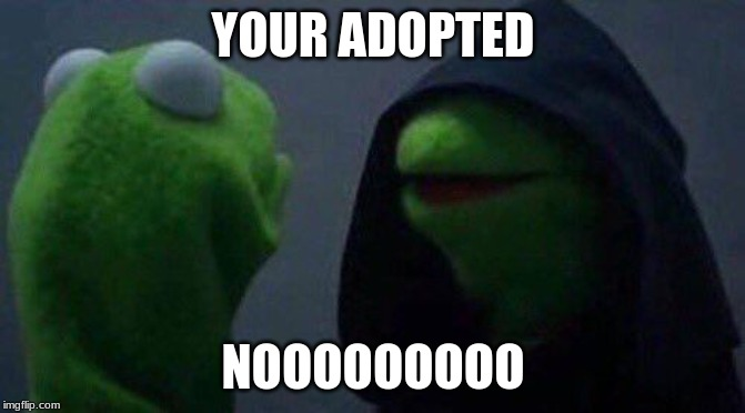 kermit me to me |  YOUR ADOPTED; NOOOOOOOOO | image tagged in kermit me to me | made w/ Imgflip meme maker