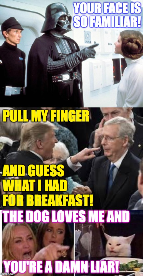So much finger pointing these days! |  YOUR FACE IS SO FAMILIAR! PULL MY FINGER; AND GUESS WHAT I HAD FOR BREAKFAST! THE DOG LOVES ME AND; YOU'RE A DAMN LIAR! | image tagged in darth vader,cat at table,trump attacking  mitch,finger pointing | made w/ Imgflip meme maker