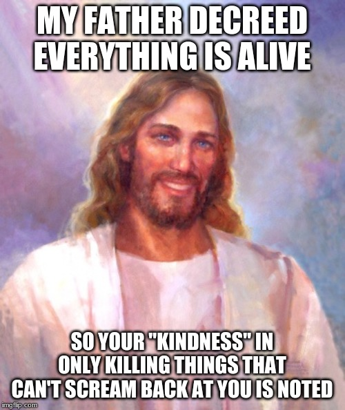 "Smiling Jesus Meme | MY FATHER DECREED EVERYTHING IS ALIVE SO YOUR ""KINDNESS"" IN ONLY KILLING THINGS THAT CAN'T SCREAM BACK AT YOU IS NOTED 