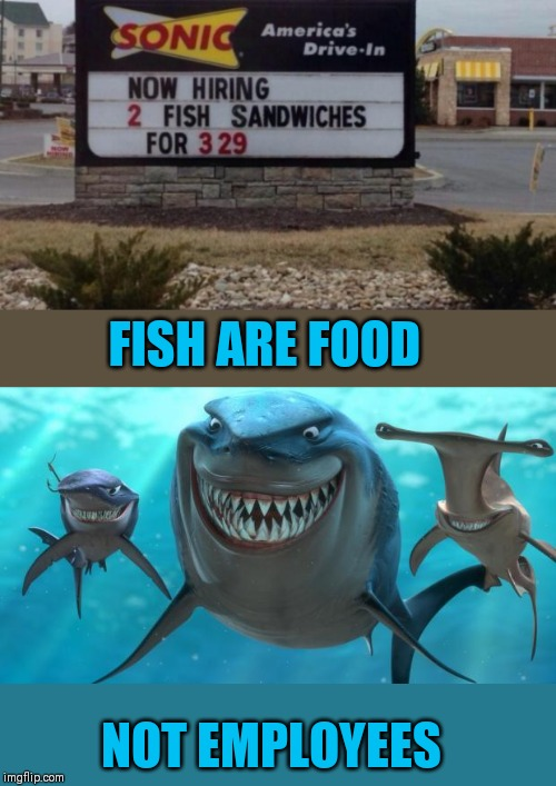 There's something fishy about this | FISH ARE FOOD NOT EMPLOYEES | image tagged in fish are friends not food,finding nemo,44colt,sonic,food,funny signs | made w/ Imgflip meme maker