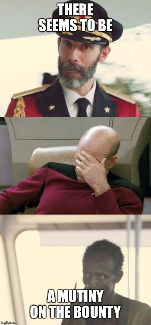 THERE SEEMS TO BE A MUTINY ON THE BOUNTY | image tagged in memes,captain picard facepalm,captain obvious,i'm the captain now | made w/ Imgflip meme maker