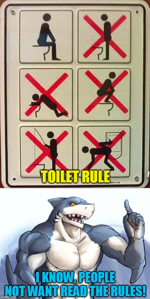 Rules for toilet, people no want read the rules! WTF! | TOILET RULE I KNOW, PEOPLE NOT WANT READ THE RULES! | image tagged in wtf,toilet,rules,ideas,toilet humor,funny | made w/ Imgflip meme maker