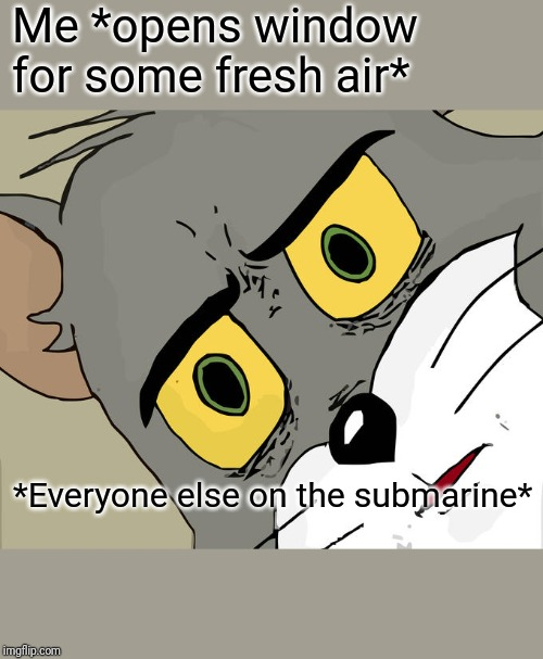 Unsettled Tom Meme | Me *opens window for some fresh air* *Everyone else on the submarine* | image tagged in memes,unsettled tom | made w/ Imgflip meme maker