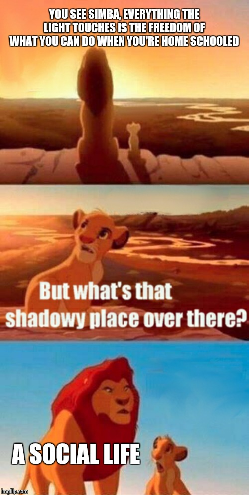 Simba Shadowy Place Meme | YOU SEE SIMBA, EVERYTHING THE LIGHT TOUCHES IS THE FREEDOM OF WHAT YOU CAN DO WHEN YOU'RE HOME SCHOOLED A SOCIAL LIFE | image tagged in memes,simba shadowy place | made w/ Imgflip meme maker