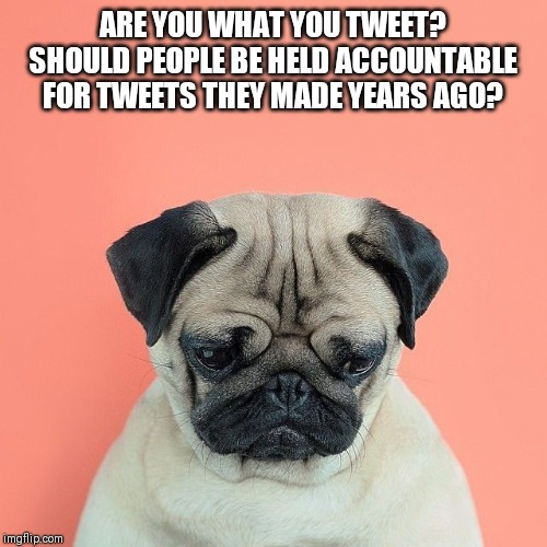 ARE YOU WHAT YOU TWEET? SHOULD PEOPLE BE HELD ACCOUNTABLE FOR TWEETS THEY MADE YEARS AGO? | image tagged in lynch mobs,twitter,accountability | made w/ Imgflip meme maker