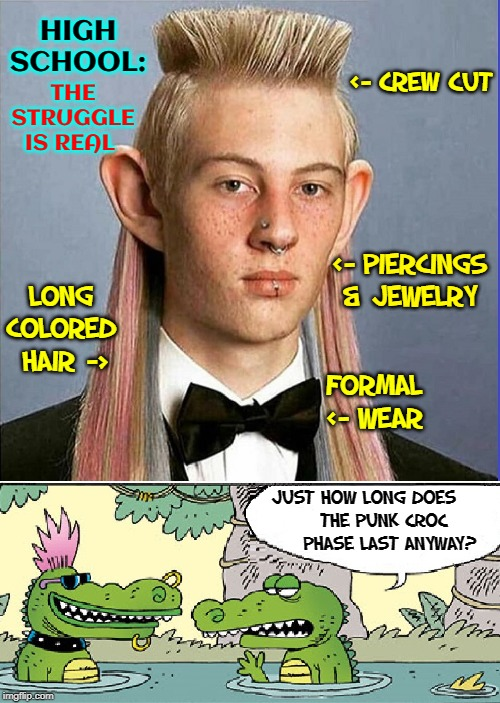 Do You Really Want to be Young Again? | FORMAL <- WEAR JUST HOW LONG DOES        THE PUNK CROC          PHASE LAST ANYWAY? <- CREW CUT LONG COLORED  HAIR -> <- PIERCINGS & JEWELRY  | image tagged in vince vance,punk,high school,yearbook,pictures,puberty | made w/ Imgflip meme maker