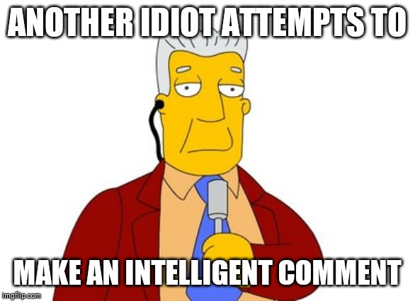 ANOTHER IDIOT ATTEMPTS TO MAKE AN INTELLIGENT COMMENT | image tagged in idiot | made w/ Imgflip meme maker