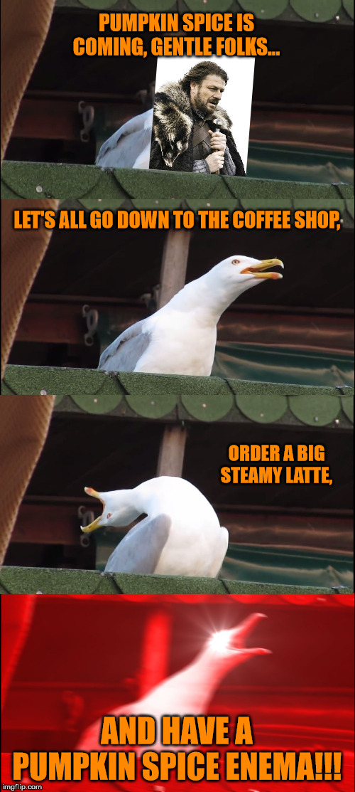 Don't stop until you cry orange | PUMPKIN SPICE IS COMING, GENTLE FOLKS... LET'S ALL GO DOWN TO THE COFFEE SHOP, ORDER A BIG STEAMY LATTE, AND HAVE A PUMPKIN SPICE ENEMA!!! | image tagged in memes,inhaling seagull,pumpkin spice,coffee,hobbies,autumn | made w/ Imgflip meme maker