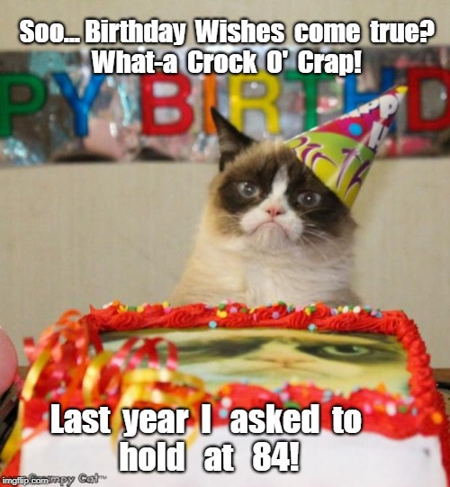 Grumpy Cat Birthday | Soo... Birthday  Wishes  come  true?  What-a  Crock  O'  Crap! Last  year  I   asked  to          hold   at   84! | image tagged in memes,grumpy cat birthday,grumpy cat | made w/ Imgflip meme maker