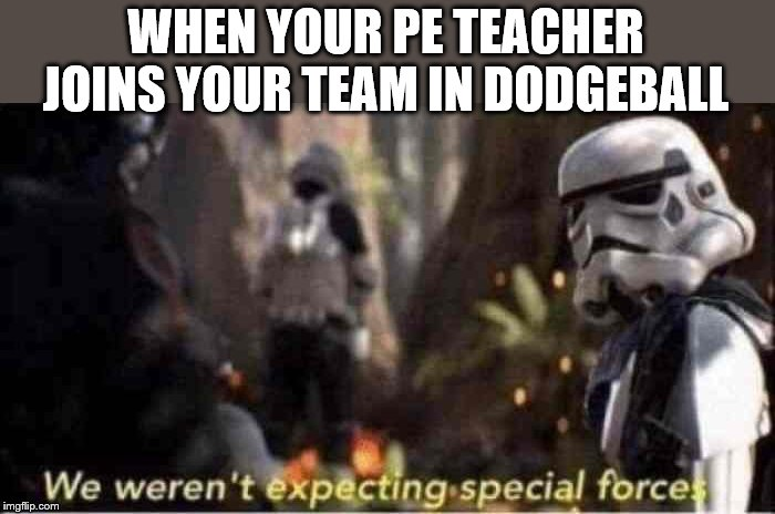 We Weren't Expecting Special Forces |  WHEN YOUR PE TEACHER JOINS YOUR TEAM IN DODGEBALL | image tagged in we weren't expecting special forces,memes | made w/ Imgflip meme maker
