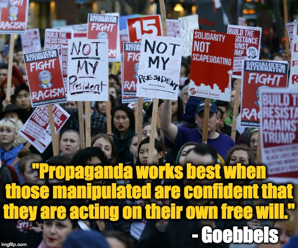 "Anti Trump protest | ""Propaganda works best when those manipulated are confident that they are acting on their own free will."" - Goebbels 