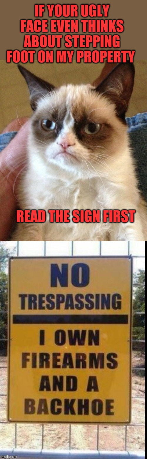 Graves by grumpy | IF YOUR UGLY FACE EVEN THINKS ABOUT STEPPING FOOT ON MY PROPERTY READ THE SIGN FIRST | image tagged in memes,grumpy cat,44colt,trespassing,grave,guns | made w/ Imgflip meme maker