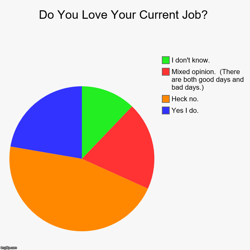 Do You Love Your Current Job? | Yes I do., Heck no., Mixed opinion.  (There are both good days and bad days.), I don't know. | image tagged in charts,pie charts | made w/ Imgflip chart maker
