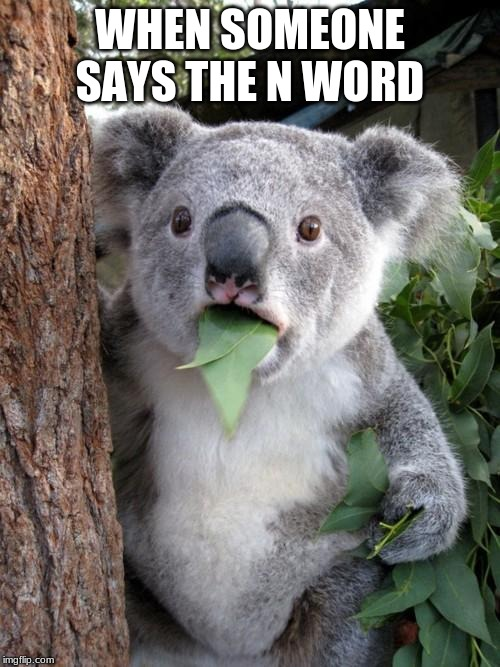 Surprised Koala |  WHEN SOMEONE SAYS THE N WORD | image tagged in memes,surprised koala | made w/ Imgflip meme maker