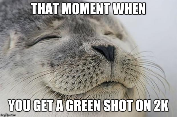 Satisfied Seal |  THAT MOMENT WHEN; YOU GET A GREEN SHOT ON 2K | image tagged in memes,satisfied seal | made w/ Imgflip meme maker