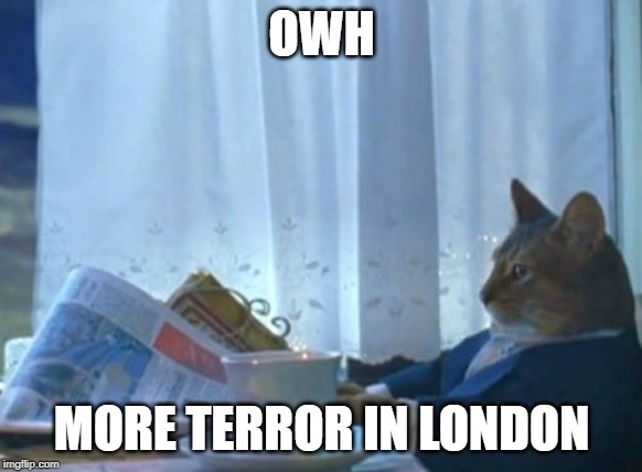 I Should Buy A Boat Cat | OWH MORE TERROR IN LONDON | image tagged in memes,i should buy a boat cat | made w/ Imgflip meme maker