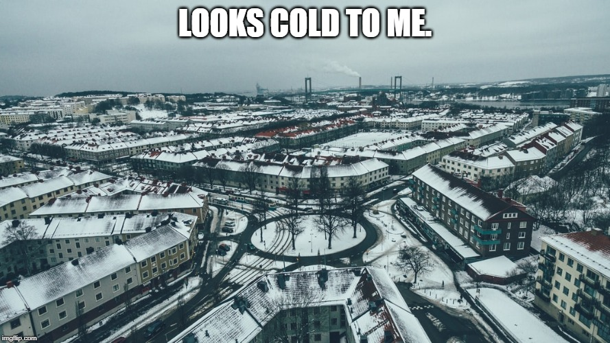 LOOKS COLD TO ME. | made w/ Imgflip meme maker