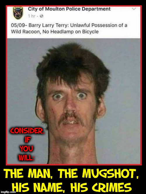 Consequences of Labeling a Kid with 3 First Names | CONSIDER, IF YOU   WILL: THE MAN, THE MUGSHOT, HIS NAME, HIS CRIMES | image tagged in vince vance,crimes,bicycle,mugshot,raccoon,criminal | made w/ Imgflip meme maker