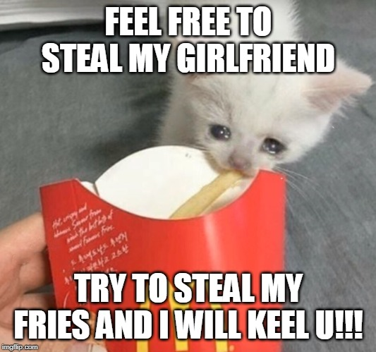 cat stealing mcdonalds fry | FEEL FREE TO STEAL MY GIRLFRIEND TRY TO STEAL MY FRIES AND I WILL KEEL U!!! | image tagged in cat stealing mcdonalds fry | made w/ Imgflip meme maker