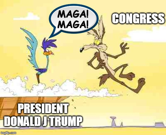 MAGA! MAGA! Congress | PRESIDENT DONALD J TRUMP CONGRESS MAGA! MAGA! | image tagged in wile e coyote roadrunner,maga,president trump,congress,funny memes,political meme | made w/ Imgflip meme maker
