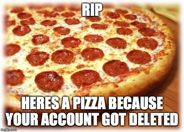 RIP HERES A PIZZA BECAUSE YOUR ACCOUNT GOT DELETED | image tagged in coming out pizza | made w/ Imgflip meme maker