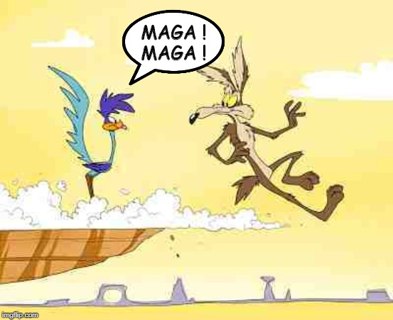 MAGA!MAGA! |  MAGA ! MAGA ! | image tagged in wile e coyote roadrunner,president trump,congress,triggered liberal,funny memes,political meme | made w/ Imgflip meme maker