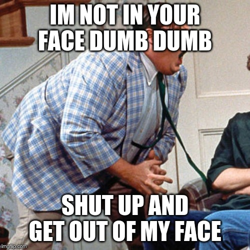 Chris Farley For the love of god |  IM NOT IN YOUR FACE DUMB DUMB; SHUT UP AND GET OUT OF MY FACE | image tagged in chris farley for the love of god | made w/ Imgflip meme maker