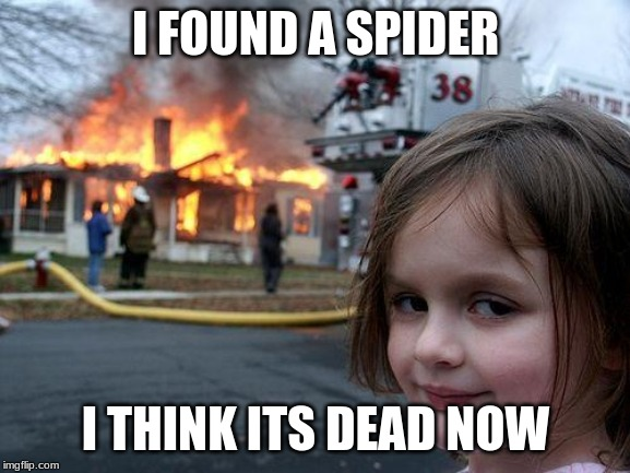 Disaster Girl |  I FOUND A SPIDER; I THINK ITS DEAD NOW | image tagged in memes,disaster girl | made w/ Imgflip meme maker