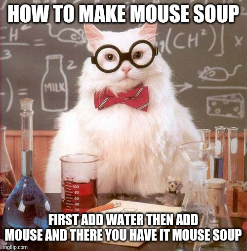 Science Cat | HOW TO MAKE MOUSE SOUP FIRST ADD WATER THEN ADD MOUSE AND THERE YOU HAVE IT MOUSE SOUP | image tagged in science cat | made w/ Imgflip meme maker