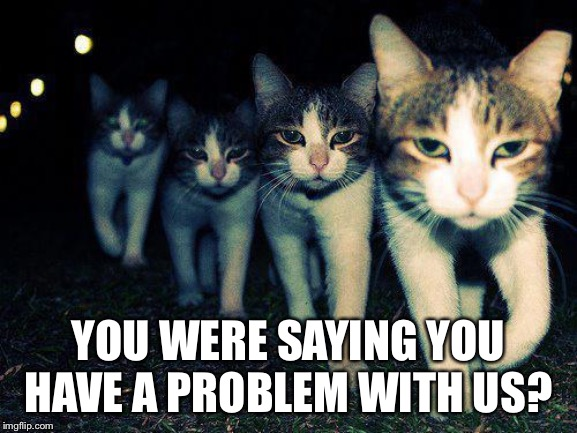 Wrong Neighboorhood Cats Meme | YOU WERE SAYING YOU HAVE A PROBLEM WITH US? | image tagged in memes,wrong neighboorhood cats | made w/ Imgflip meme maker