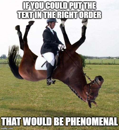 Horse upside down | IF YOU COULD PUT THE TEXT IN THE RIGHT ORDER THAT WOULD BE PHENOMENAL | image tagged in horse upside down | made w/ Imgflip meme maker