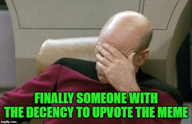 Captain Picard Facepalm Meme | FINALLY SOMEONE WITH THE DECENCY TO UPVOTE THE MEME | image tagged in memes,captain picard facepalm | made w/ Imgflip meme maker