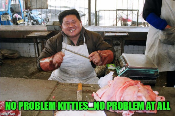 NO PROBLEM KITTIES...NO PROBLEM AT ALL | made w/ Imgflip meme maker