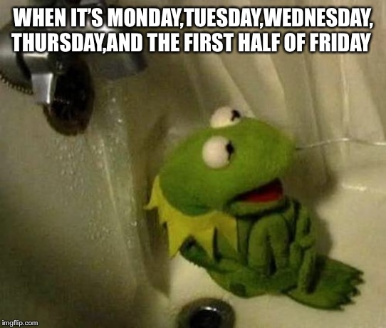 Kermit on Shower | WHEN IT'S MONDAY,TUESDAY,WEDNESDAY, THURSDAY,AND THE FIRST HALF OF FRIDAY | image tagged in kermit on shower | made w/ Imgflip meme maker