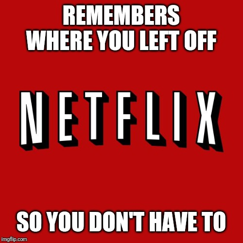 Goddam you Netflix! |  REMEMBERS WHERE YOU LEFT OFF; SO YOU DON'T HAVE TO | image tagged in goddam you netflix | made w/ Imgflip meme maker