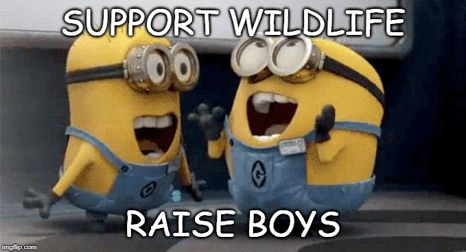 Excited Minions | SUPPORT WILDLIFE RAISE BOYS | image tagged in memes,excited minions | made w/ Imgflip meme maker