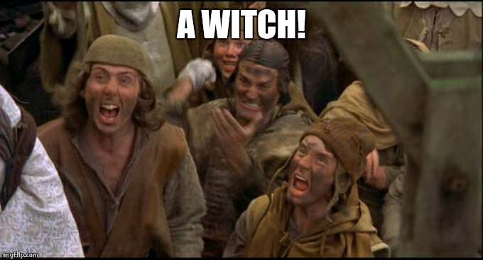 Monty Python witch | A WITCH! | image tagged in monty python witch | made w/ Imgflip meme maker