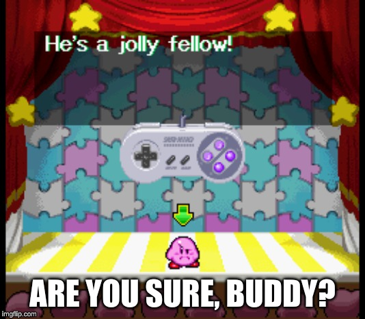 Feeling jolly, Kirboi? | ARE YOU SURE, BUDDY? | image tagged in kirby | made w/ Imgflip meme maker