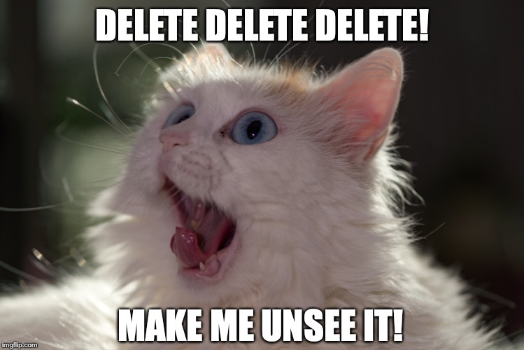 When you see something that simply just make no darn sense... | DELETE DELETE DELETE! MAKE ME UNSEE IT! | image tagged in funny memes,cats,shocked cat,can't unsee,memes,delete yourself,memes | made w/ Imgflip meme maker
