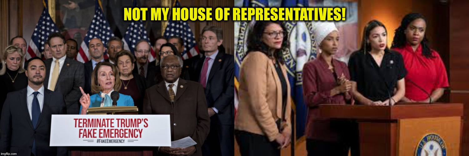 NOT MY HOUSE OF REPRESENTATIVES! | image tagged in democrat congressmen,nancy pelosi,squad | made w/ Imgflip meme maker