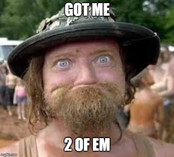 Hillbilly | GOT ME 2 OF EM | image tagged in hillbilly | made w/ Imgflip meme maker