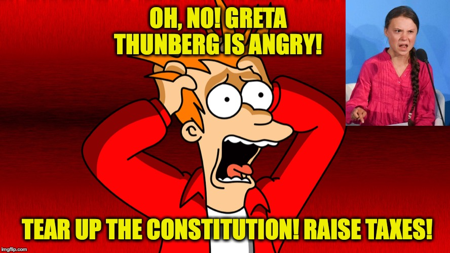 Poor Deluded Young Girl | OH, NO! GRETA THUNBERG IS ANGRY! TEAR UP THE CONSTITUTION! RAISE TAXES! | image tagged in fry panic,greta thunberg,constitution,let's raise their taxes | made w/ Imgflip meme maker