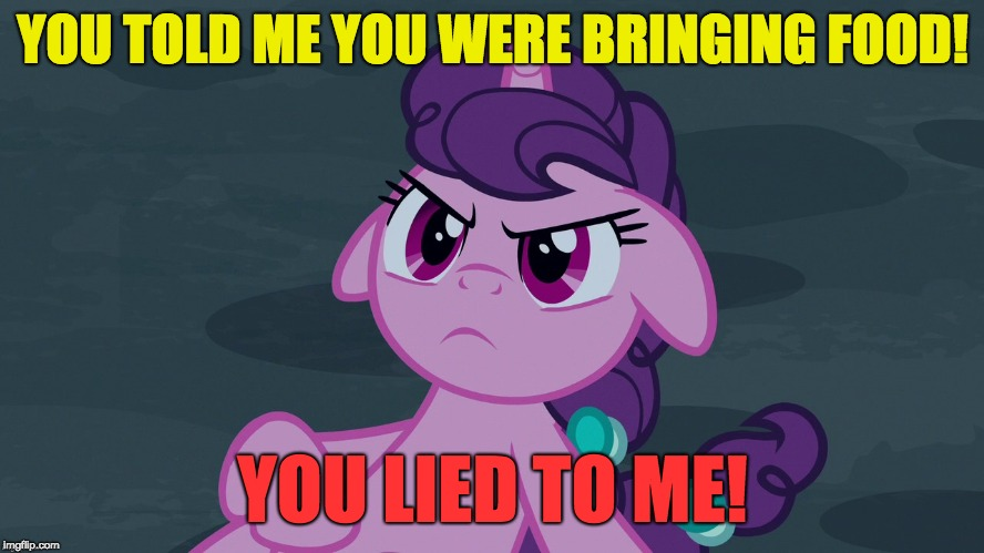 Bring her food, when she asks for it! | YOU TOLD ME YOU WERE BRINGING FOOD! YOU LIED TO ME! | image tagged in memes,ponies,food | made w/ Imgflip meme maker