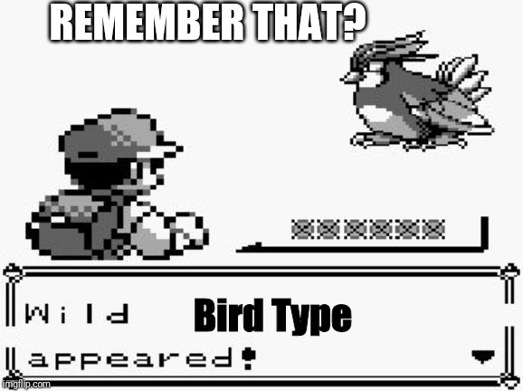 pokemon appears | REMEMBER THAT? Bird Type | image tagged in pokemon appears | made w/ Imgflip meme maker