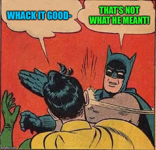 Batman Slapping Robin Meme | WHACK IT GOOD- THAT'S NOT WHAT HE MEANT! | image tagged in memes,batman slapping robin | made w/ Imgflip meme maker