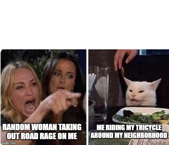 Angry Woman and Cat | ME RIDING MY TRICYCLE AROUND MY NEIGHBORHOOD RANDOM WOMAN TAKING OUT ROAD RAGE ON ME | image tagged in angry woman and cat | made w/ Imgflip meme maker
