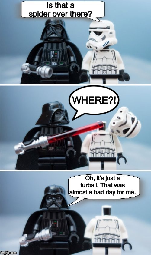 Fatal mistake | Is that a spider over there? Oh, it's just a furball. That was almost a bad day for me. WHERE?! | image tagged in lego vader kills stormtrooper by giveuahint,memes,funny,dashhopes,we miss you | made w/ Imgflip meme maker