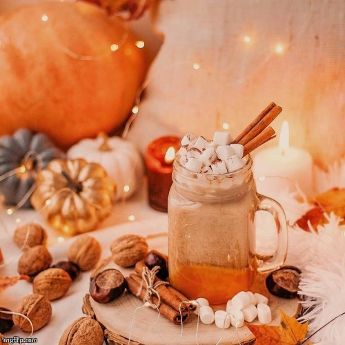 PUMPKIN MOCHA | image tagged in food,drinks,pumpkin spice | made w/ Imgflip meme maker